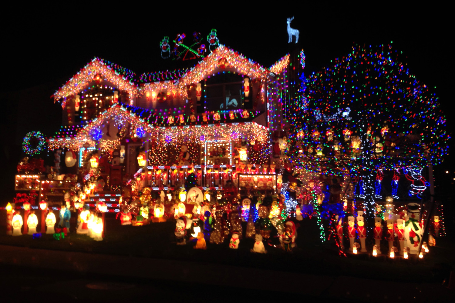 Collection Of Year Round Christmas Lights Unamon